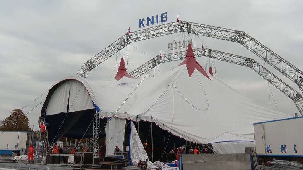 Oktober statt Mai: Circus Knie baut sein Zelt auf dem Sechseläutenplatz auf