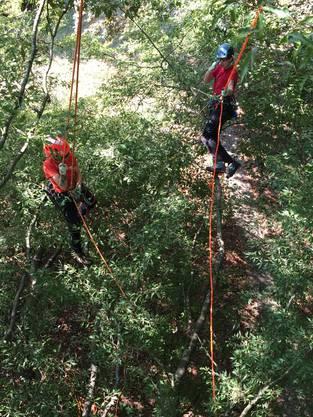 Zwei Baumpfleger üben Seiltechnik.