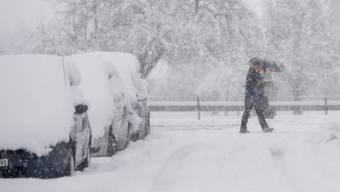 Schnee bis ins Flachland (05.01.2019)