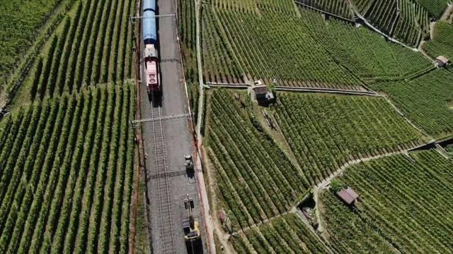 SBB-Bauarbeiten: Warum die Linie Bern–Lausanne unterbrochen ist