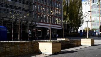 Die Platanen wurden beim Brunnen in der Mitte des Marktplatzes platziert.