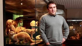 Thomas Briner, Konservator des Naturmuseums, will das Naturmuseum Stockwerk um Stockwerk neu gestalten.Hanspeter Bärtschi