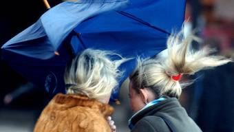 Starke Winde sorgen in der Schweiz für verschiedene Störungen