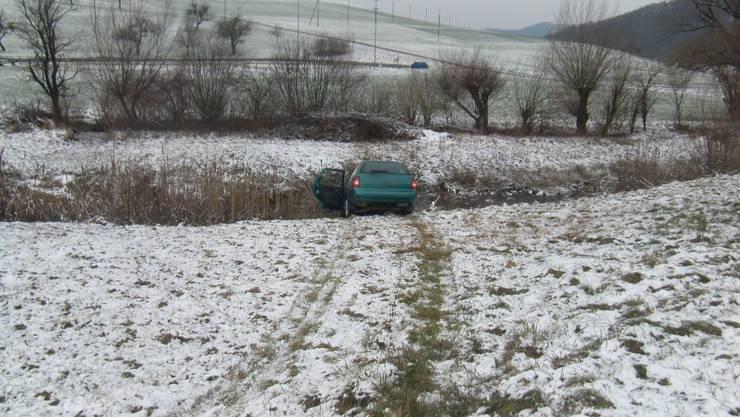 Über eine Wiese rutschte der Personenwagen in den Weiher