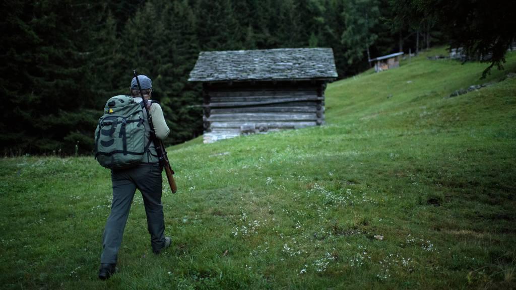Nach erneutem Wolfsriss: Was bringt die Annahme des Jagdgesetzes?