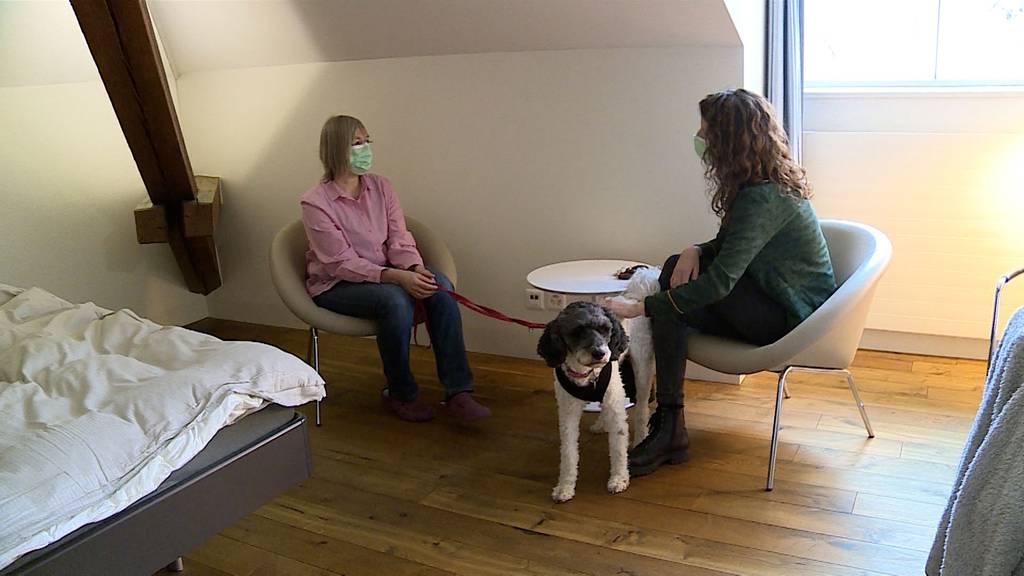 Hauptbeitrag-Tiere-Therapie-04