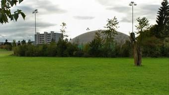 Ein jetzt noch leeres Stück Land soll bald mit Leben gefüllt werden: Im Grindicher ist das neue Jugendhaus geplant.