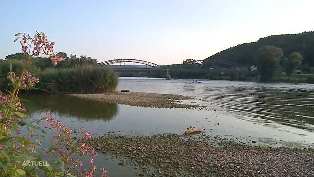Tragischer Badeunfall in Koblenz