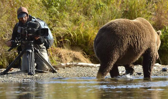 Auch Filmer Roman Droux kamen die Tiere sehr nahe.