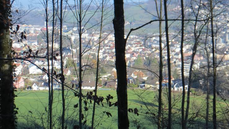 Auf den Weg zum Restaurant Bienenberg, so der Blick auf Frenkendorf und Füllinsdorf