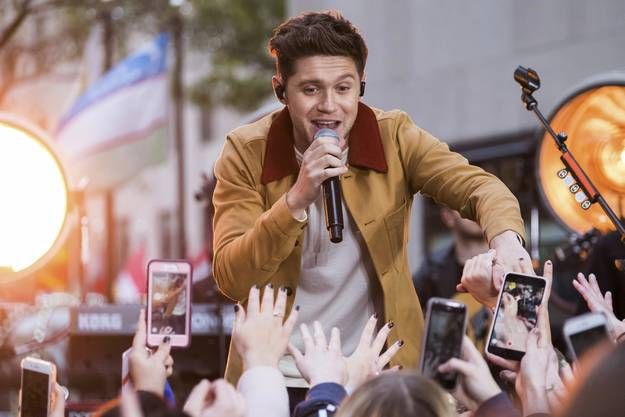 Ganze 90'700 Euro bezahlte ein Fan für einen angebissenen Toast des One Direction-Sängers Niall Horan.