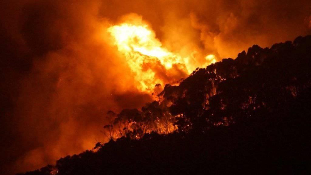 Der höchste Berg der Philippinen steht in Flammen. Hunderte Menschen, darunter viele Touristen, mussten sich vor den Flammen auf dem 3142 Meter hohen Apo in Sicherheit bringen. (Symbolbild)
