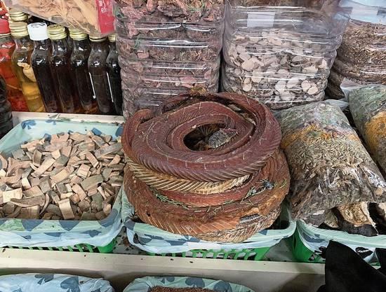 Auf dem Basar in Almaty gibt es auch Schlangen zu kaufen.