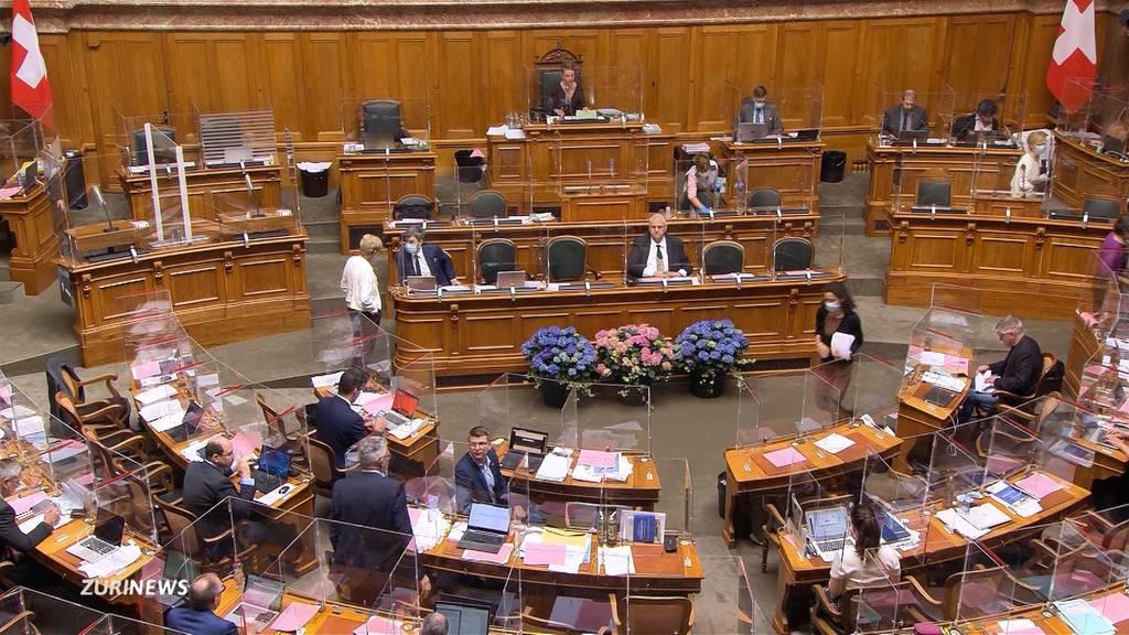 Parlamentarier sollen doppelte Staatsbürgerschaft angeben müssen