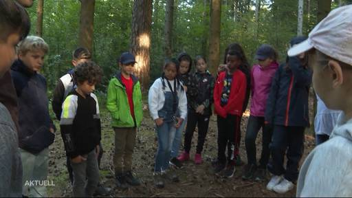 Weg von Corona: Primarschüler lernen im Wald statt im Klassenzimmer