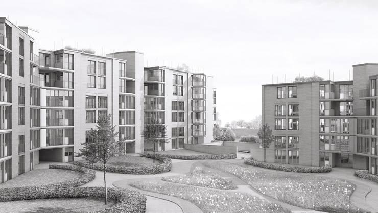"""Dieses Projekt hat den Architekturwettbewerb """"Wohnsiedlung Grammet"""" im Heidenloch in Liestal gewonnen"""