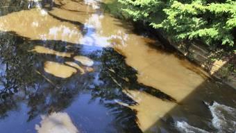 Der Marchbach in Ettingen und Therwil ist mit Öl verschmutzt worden. (Symbolbild)