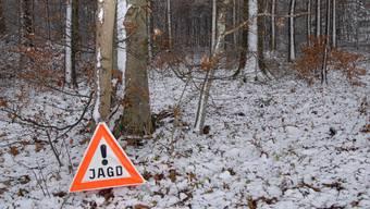 Der Regierungsrat will keinen  Revision des Jagdgesetzes (Symbolbild)