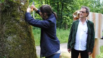Neue Lungen für Badener Bäume