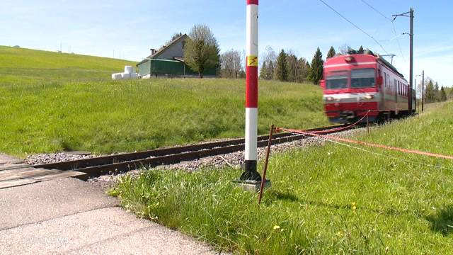 Appenzell: 10-jähriger Töfflifahrer von Zug erfasst