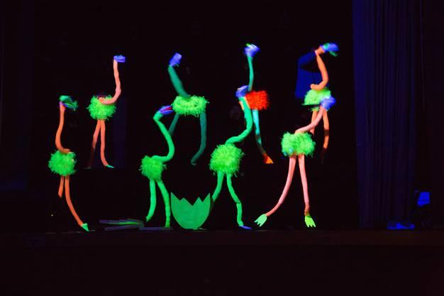 Zu Rassigen Sambatiteln tanzten die Turner des TV Kleinhüningen Inder Pause.