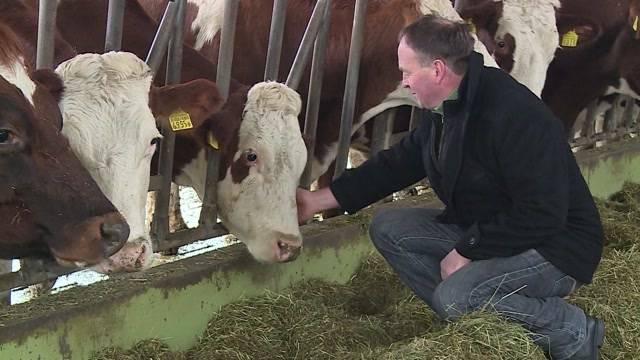 Suizid wegen Milchpreis?