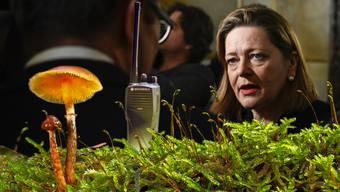 Im Kanton Uri dürfen Pilzsammler per Reglement keine Funkgeräte verwenden. Justizdirektorin des Zentralschweizer Kantons ist Ex-Bundesratskandidatin Heidi Z'graggen.