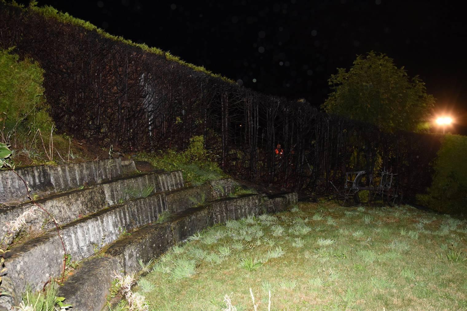 Die Bewohner versuchten die Hecke vergeblich zu löschen und mussten die Feuerwehr alarmieren. (Bild: Kapo SG)