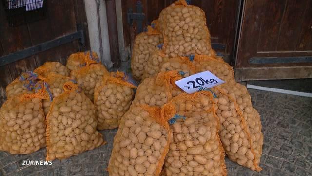 23 Tonnen Bio-Kartoffeln für Tiere