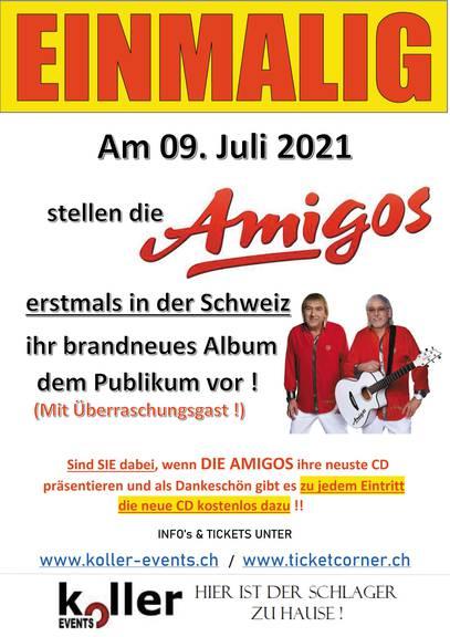 Flyer-AMIGOS