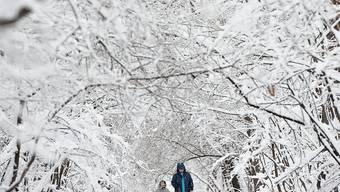 Ein tief verschneiter Park in Bulgariens Hauptstadt Sofia