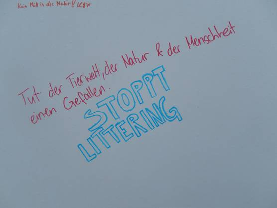 Kreative Anti-Littering-Bekennung