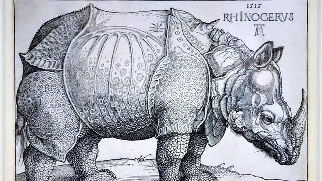 """Albrecht Dürers """"Rhinozeros"""" von 1515"""