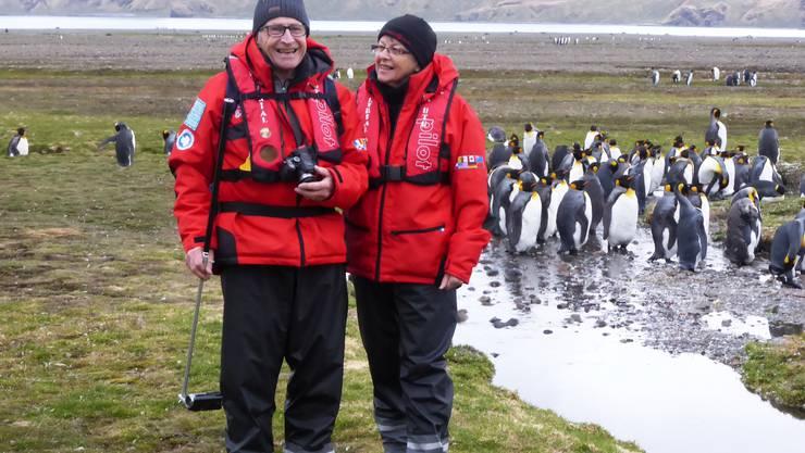 Auf Du und Du mit Pinguinen: Rolf und Ruth Humbel während ihrer Antarktis-Expedition.