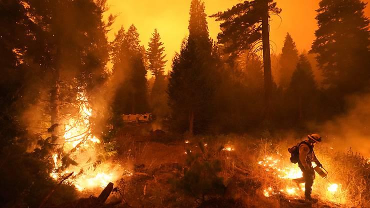 dpatopbilder - Ein Feuerwehrmann ist bei einem Waldbrand im Einsatz. In ganz Kalifornien waren laut einem Lagebericht der Feuerwehr von Sonntag zuletzt mehr als 14 800 Einsatzkräfte damit beschäftigt, 23 größere Brände einzudämmen. Foto: Marcio Jose Sanchez/AP/dpa