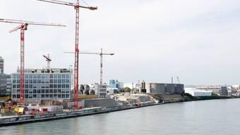 Hier soll die Uferpromenade Richtung Huningue entstehen.Kenneth Nars