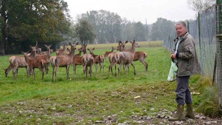 K.F. bei seinen Hirschen in Luterbach.