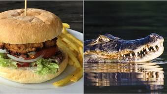 Nach der Sichtung eines Kaimans stehen in Restaurants am Hallwilersee nun Krokodilburger im Angebot.