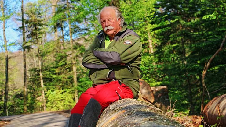Förster Stefan Landolt ist seit 38 Jahren Förster im Forstbetrieb Thiersteinberg und kennt die dortigen Wälder wie kein Zweiter.