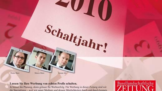 bz Eigenregie Asset 2010