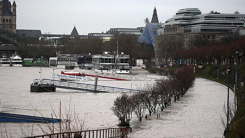 Ein Uferweg in Köln ist vom Rhein überflutet. Der anhaltende Regen lässt den Rhein in Nordrhein-Westfalen weiter steigen.
