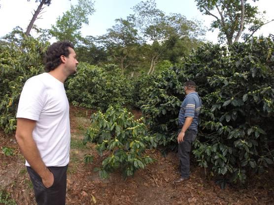 Christian Burri, Mitgründer von algrano (l.), besucht Produzent Jorge Nelson und seine blühenden Kaffeefelder in Ocotal Nicaragua.
