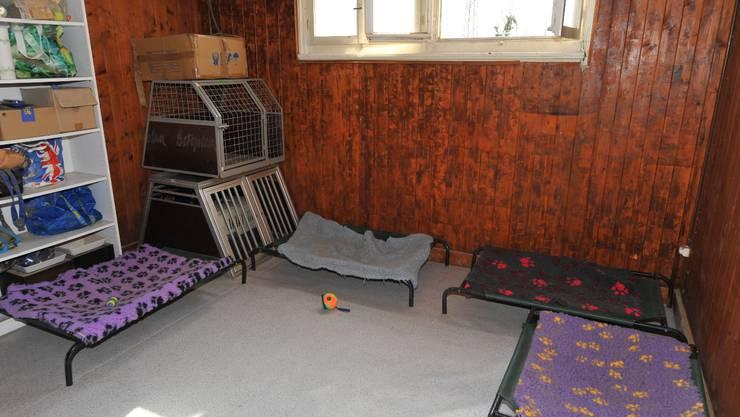 Tage nach der Tierschutzmeldung präsentiert sich die Situation im Keller des Züchterhauses wieder tiergerecht und passend.  Oliver Menge