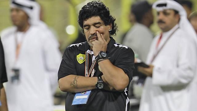 Diego Maradona ist als Trainer wieder zu haben