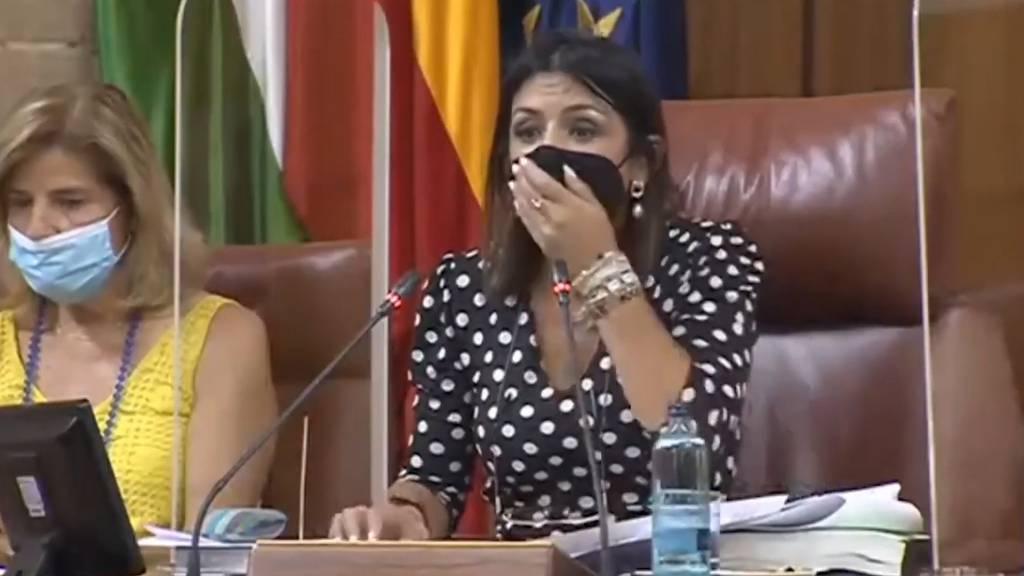 Ratte sorgt für Chaos in Parlamentssitzung