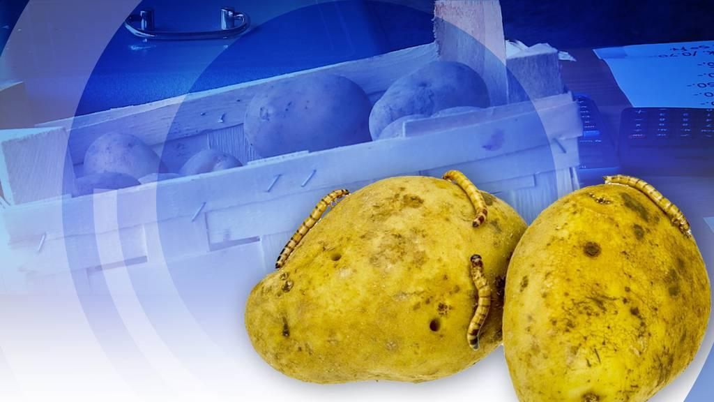 Konsumenten reissen sich in Kölliken um tonnenweise Kartoffeln.