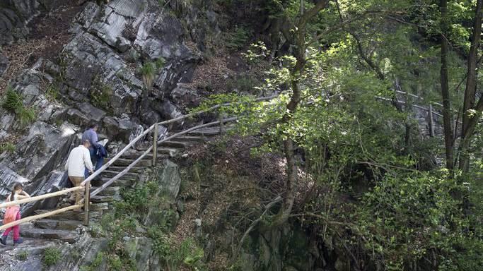 Eine junge Schweizerin lehnte sich beim Wandern an ein morsches Geländer und stürzte in den Tod. (Symbolbild)