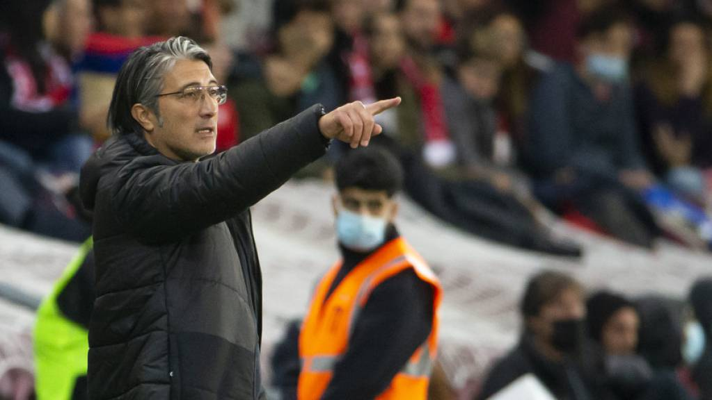 Diesmal setzte das Team die Anweisungen von Trainer Murat Yakin um: 2:0 gegen Nordirland.
