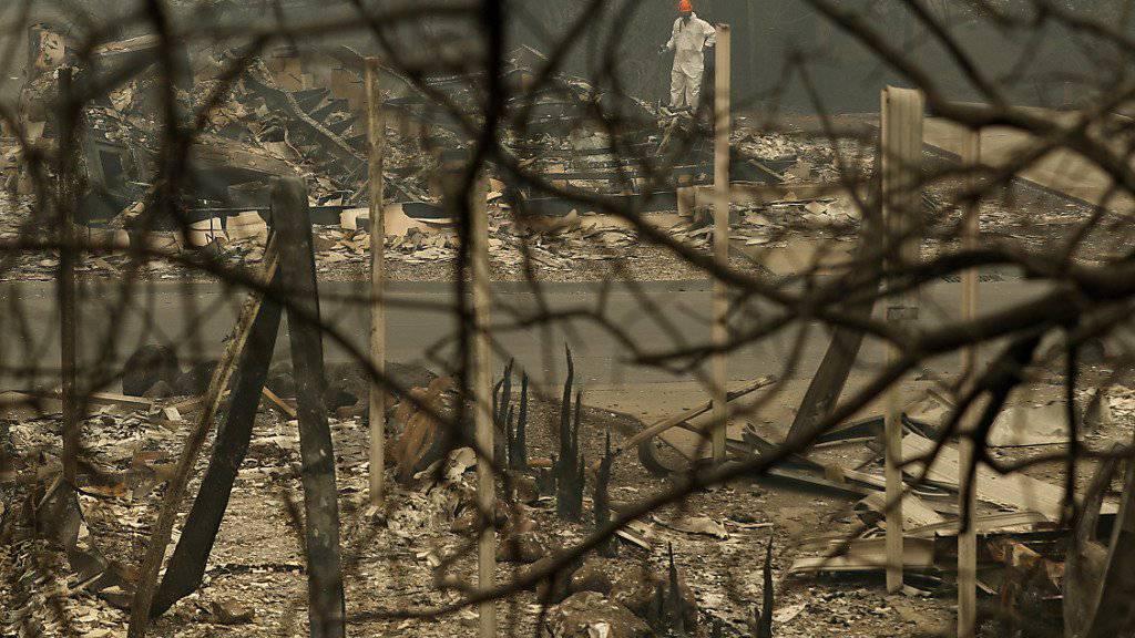 Von der US-Stadt Paradise blieben nach einem Waldbrand nur qualmende Ruinen übrig.