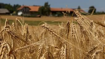 Die Agrarbehörde des Bundes wollte die erhaltenen Direktzahlungen und Ökobeiträge jedes Landwirts übers Internet der Bevölkerung zugänglich machen.